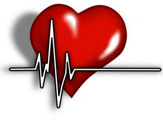 קצב לב